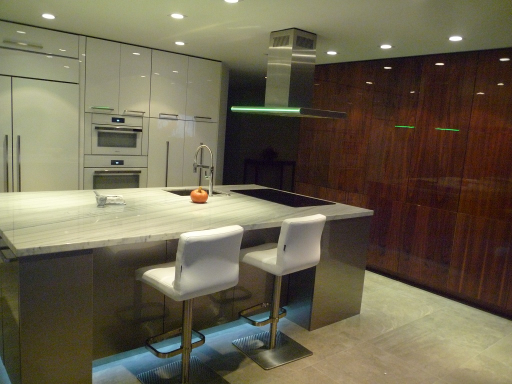 Modern/Contemporary Kitchens - European Cabinets and Design